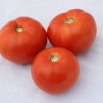Dixie Red Fresh Market Tomato