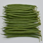 Sybaris Seminis Green Bean